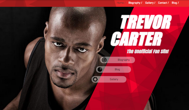 Pay Homage To Your Favorite Sports Star Or Make Own Biography With This Highly Energized Website Template Use The Blog Feature Shout About All